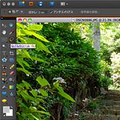 PhotoShop Elements 8 | ツールバーのヘルプ